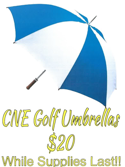 Umbrellas for $20